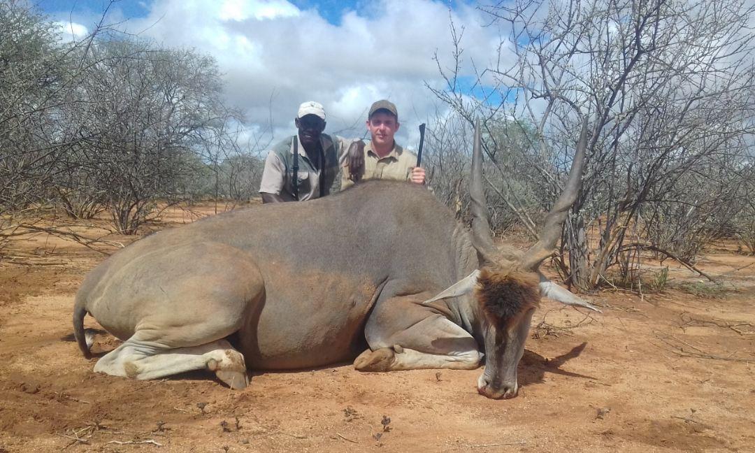 jagd und safari in namibia schönfeld safaris
